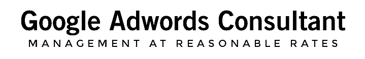 Certified Google AdWords & Analytics Consultant
